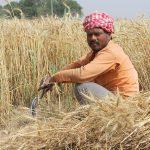 किसान क्रेडिट कार्ड (Kisan Credit Card) क्या है और कैसे मिलता है?